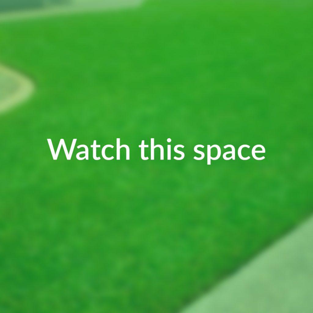 Beautiful Neat Green Lawn | Brisbane Best Lawn