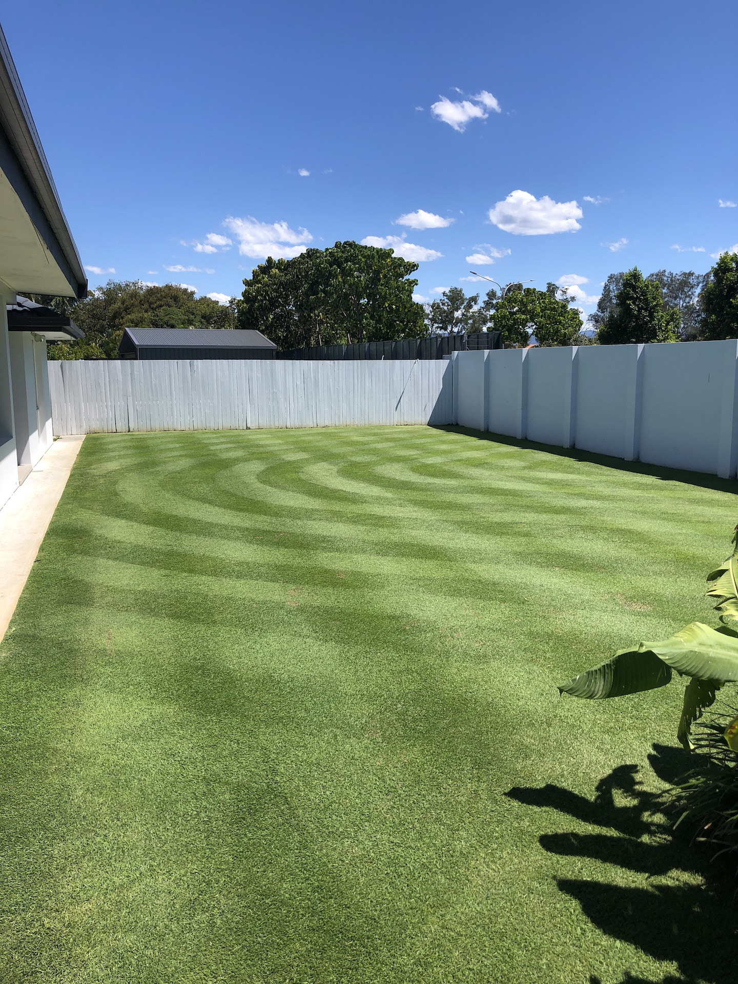 """Image of a perfect green grass 