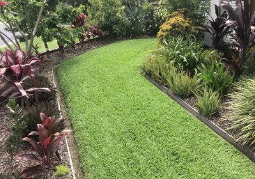 perfect maintain green lawn path